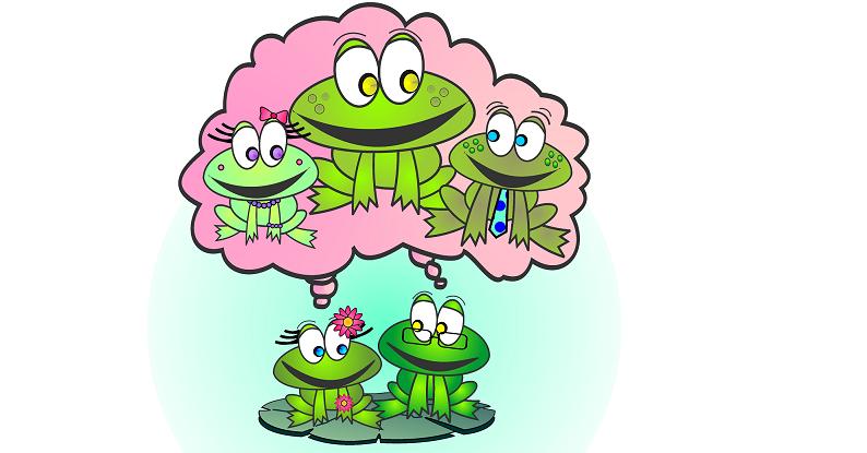 Social Frog Family